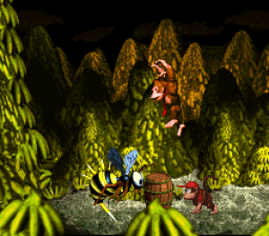 Donkey Kong Country 06