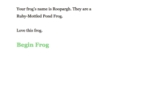 Beautiful Frog 04
